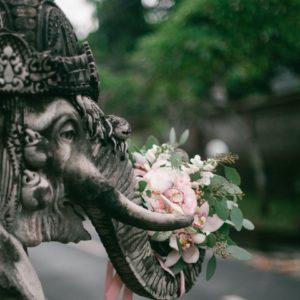 фото букета и слона